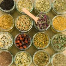 Herbs Come in Many Forms…But Which One is Best?